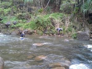 20130221_115127_Kalalau_river_fording