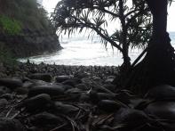 20130221_125710_Kalalau_beach
