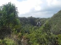 20130223_141318_Opaekaa_Falls